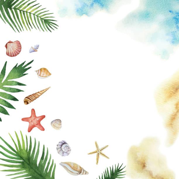 stockillustraties, clipart, cartoons en iconen met aquarel vector kleurrijke schelpen en tropische bladeren geïsoleerd op een witte achtergrond. - zeeschelp