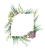 Watercolor vector frame of cacti and succulent plants isolated on white background. Flower illustration for your projects, greeting cards and invitations.