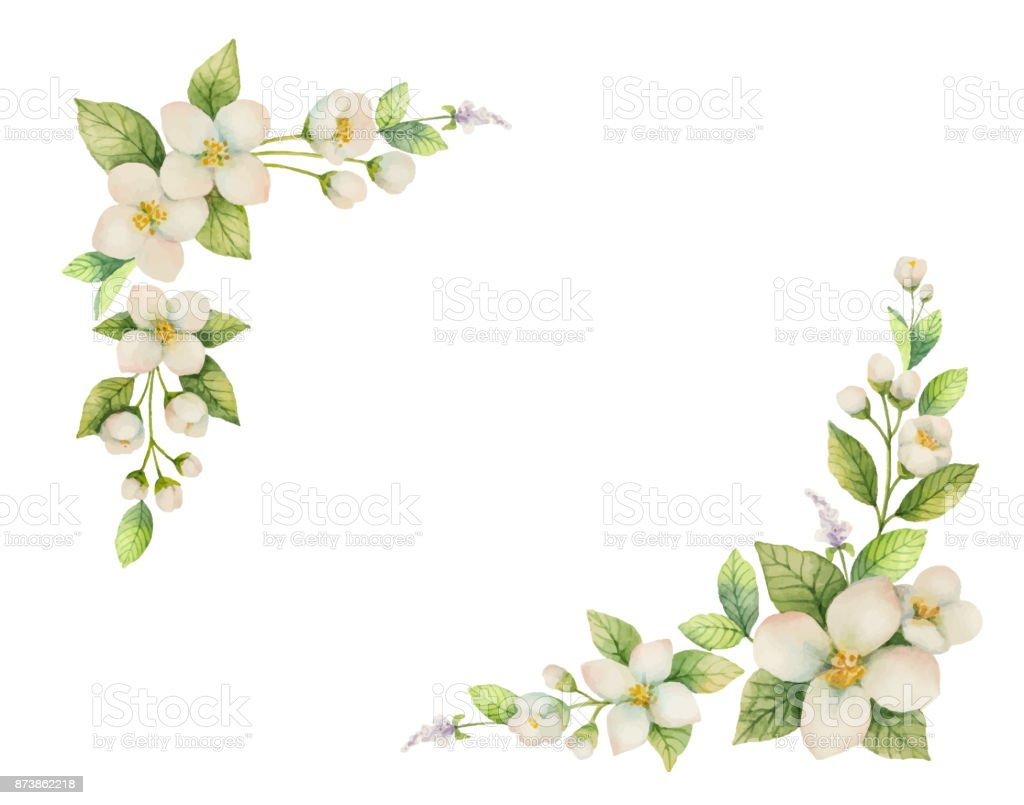 Watercolor vector frame of flowers and branches jasmine isolated on watercolor vector frame of flowers and branches jasmine isolated on a white background royalty izmirmasajfo Gallery