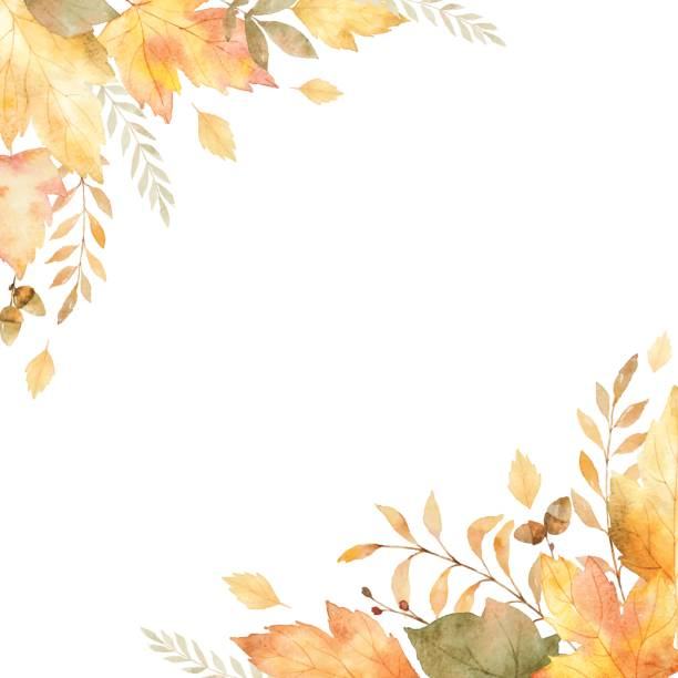 watercolor vector frame of leaves and branches isolated on white background. - fall stock illustrations