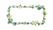 Watercolor vector frame with green eucalyptus leaves, Jasmine flowers and branches. Spring or summer flowers for invitation, wedding or greeting cards.