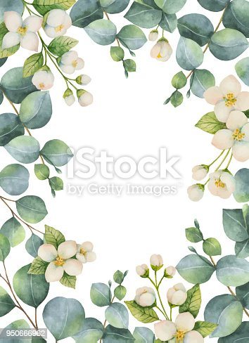Watercolor Vector Green Floral Card With Eucalyptus Leaves ...