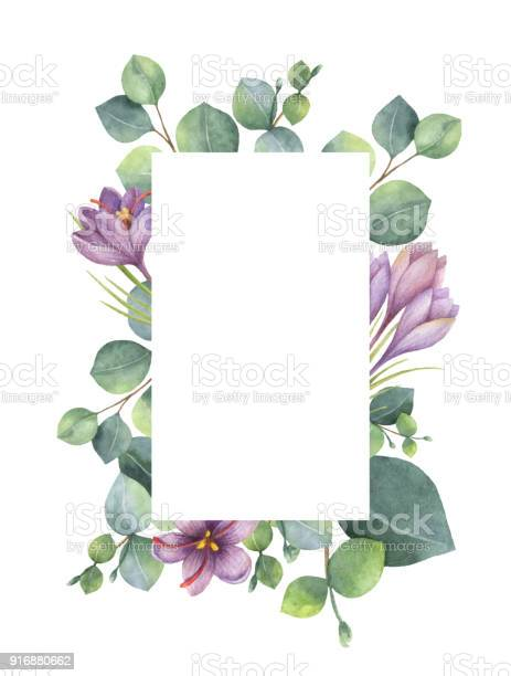 Watercolor vector green floral card with eucalyptus leaves purple vector id916880662?b=1&k=6&m=916880662&s=612x612&h=41pxiukaxbleeuwgomvvkaaq0qpnqh5zrw mry nf5u=