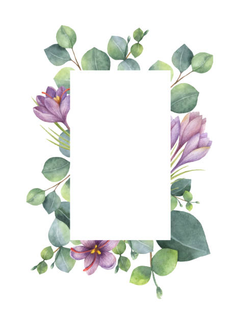 watercolor vector green floral card with eucalyptus leaves, purple flowers and branches isolated on white background. - floral frames stock illustrations, clip art, cartoons, & icons