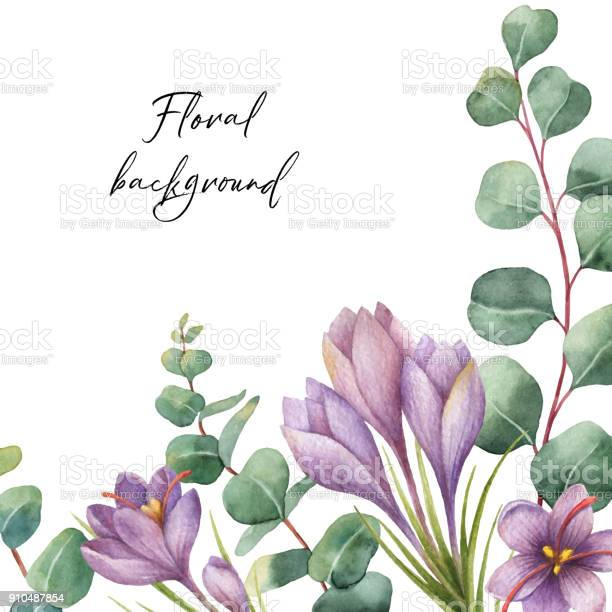Watercolor vector green floral card with silver dollar eucalyptus vector id910487854?b=1&k=6&m=910487854&s=612x612&h=rcdguksmbk 0nscxj cibjw81jct z7ohqoup7eehyq=
