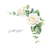 Watercolor vector hand painted frame with green eucalyptus leaves and white roses. Illustration for cards, wedding invitation, posters, save the date or greeting design isolated on white background.