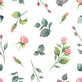 Watercolor vector hand painting seamless pattern of rose flowers and green leaves. Spring or summer flowers for design textiles, wedding or greeting cards.
