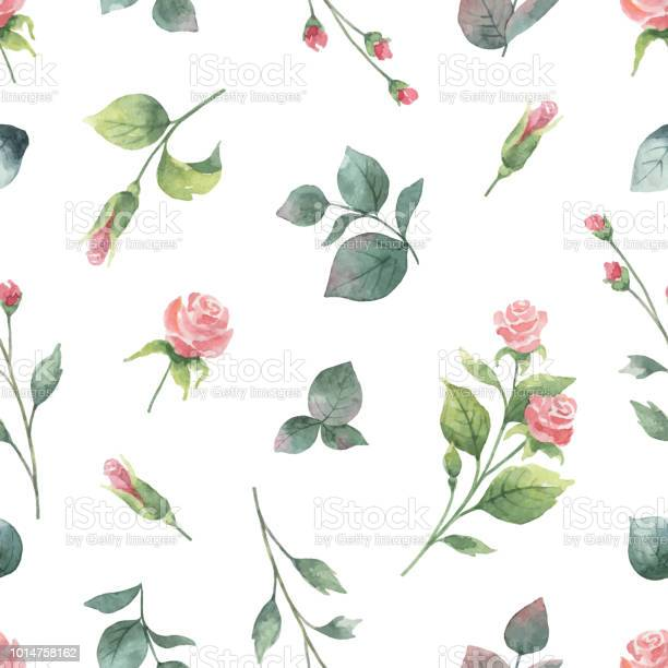 Watercolor vector hand painting seamless pattern of rose flowers and vector id1014758162?b=1&k=6&m=1014758162&s=612x612&h=padvmclqbg17v2n3 yciuhlw89xrcjkmi3in6e1bx m=