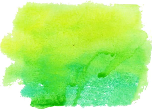 stockillustraties, clipart, cartoons en iconen met watercolor - green background