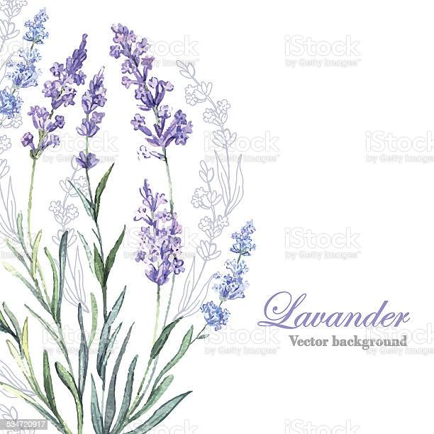 Watercolor vector lavender background vector id534720917?b=1&k=6&m=534720917&s=612x612&h=vzqwjgxlhl7b8wqpgpqsnrtbmbc6olfvfq5tczpy4ia=