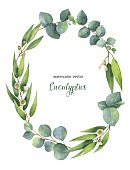 Watercolor vector oval wreath with green eucalyptus leaves and branches.
