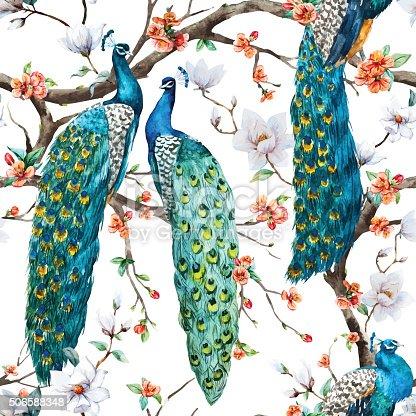 istock Watercolor vector peacock pattern 506588348