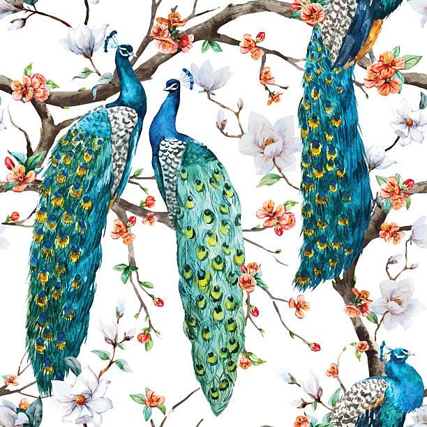 акварельный вектор синий узор - peacock stock illustrations