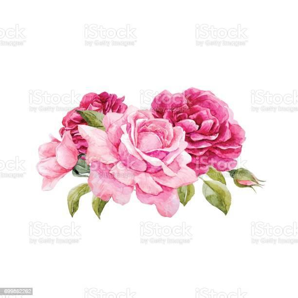 Watercolor vector roses composition vector id699862262?b=1&k=6&m=699862262&s=612x612&h=k9w5vrgrxbehtscbzvvmocblhy0ft2qsg0lljfg4sli=
