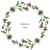 Watercolor vector round frame of milk Thistle.