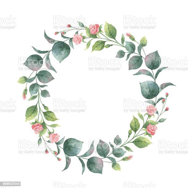 Watercolor vector round wreath with eucalyptus leaves and branches vector id898932544?b=1&k=6&m=898932544&s=612x612&h=vjlke9s0oxjeax0ay1dvj0ctrn2psbr4n46rzcrcvv0=