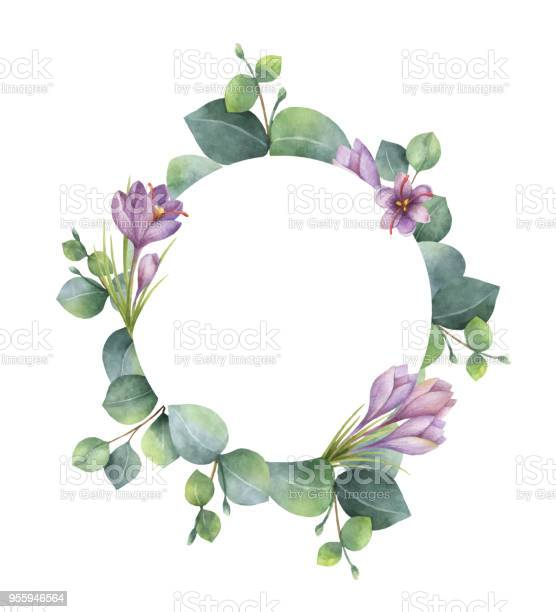 Watercolor vector round wreath with eucalyptus leaves and flowers of vector id955946564?b=1&k=6&m=955946564&s=612x612&h=rbxx2wf1qkpt cg9kglv7iglsec6mey4dcgda9 pnnc=