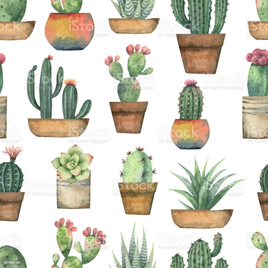 Watercolor vector seamless pattern of cacti and succulent plants isolated on white background. vector art illustration