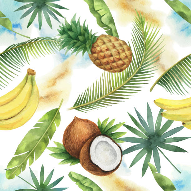 Watercolor vector seamless pattern of coconut, banana, pineapple and palm trees isolated on white background. Watercolor vector seamless pattern of coconut, banana, pineapple and palm trees isolated on white background. Hand painted illustration for design kitchen, bio food, menu, healthy eating, textiles, market. banana patterns stock illustrations