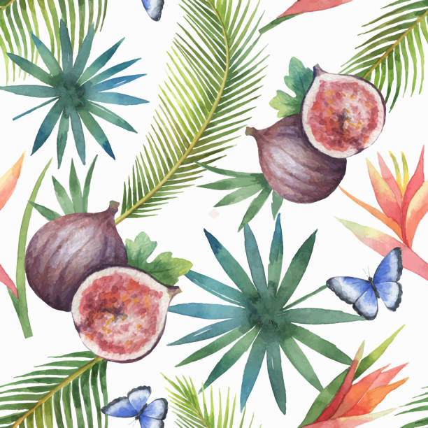 Watercolor vector seamless pattern of figs and palm trees isolated on white background. Watercolor vector seamless pattern of figs and palm trees isolated on white background. Hand painted illustration for design kitchen, bio food, menu, healthy eating, textiles, market. fig stock illustrations