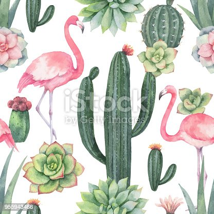 Watercolor vector seamless pattern of pink flamingo, cacti and succulent plants isolated on white background.