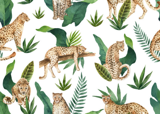watercolor vector seamless pattern of tropical leaves and leopards in jungle isolated on white background. - exotic animals stock illustrations