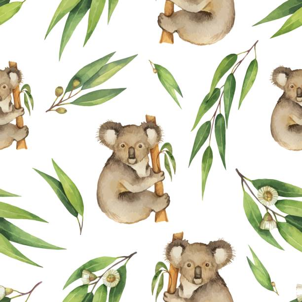 watercolor vector seamless pattern with eucalyptus leaves and koala isolated on white background. - koala stock illustrations