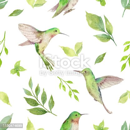 Watercolor vector seamless pattern with Hummingbird and green branches isolated on white background. Illustration for design wedding invitations, greeting cards, textile, packaging.