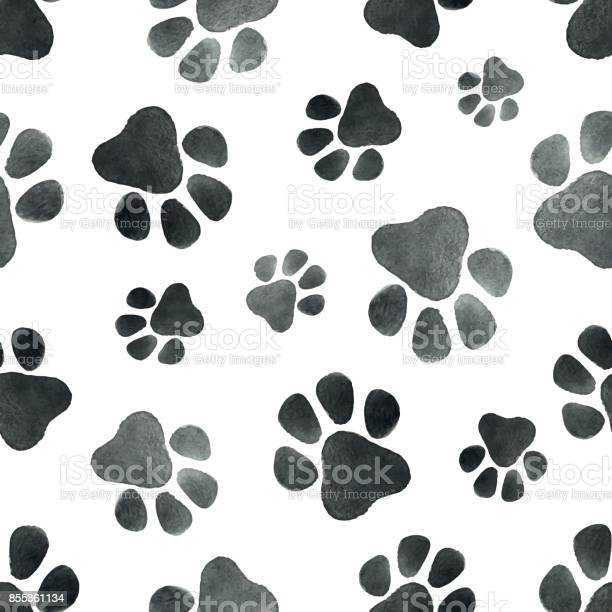Watercolor vector seamless pattern with the imprint of dog paws vector id855361134?b=1&k=6&m=855361134&s=612x612&h=ddfqme8h9lzucrkd3xhk3mu9qftraccqpblijmvrb8y=