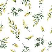 Watercolor vector seamless pattern with wormwood flowers and branches. Background for textile, paper and other print and web projects.