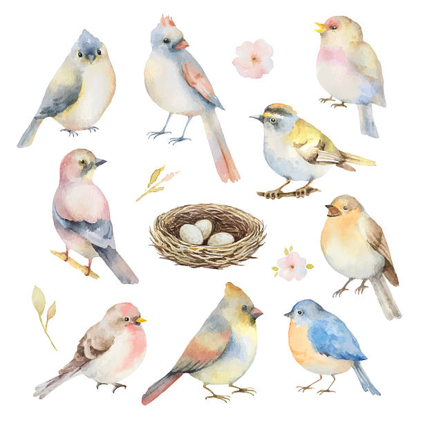 水彩ベクトルのセットあります。 - 鳥点のイラスト素材/クリップアート素材/マンガ素材/アイコン素材