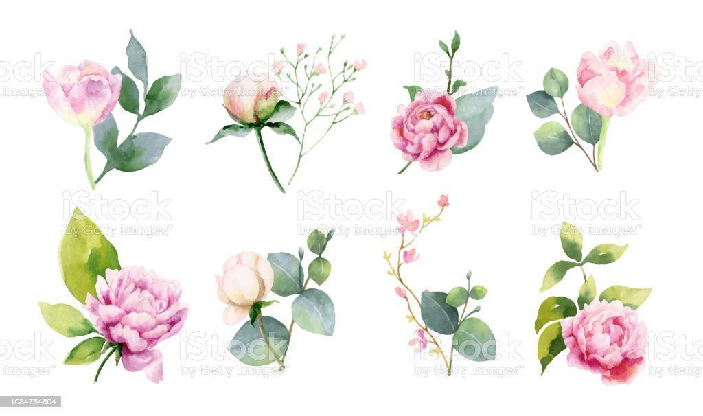 Watercolor vector set of bouquets of green branches and flowersset of bouquets of green branches and flowers. - Royalty-free Art stock vector