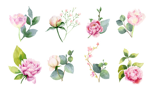 Watercolor vector set of bouquets of green branches and flowersset of bouquets of green branches and flowers. clipart