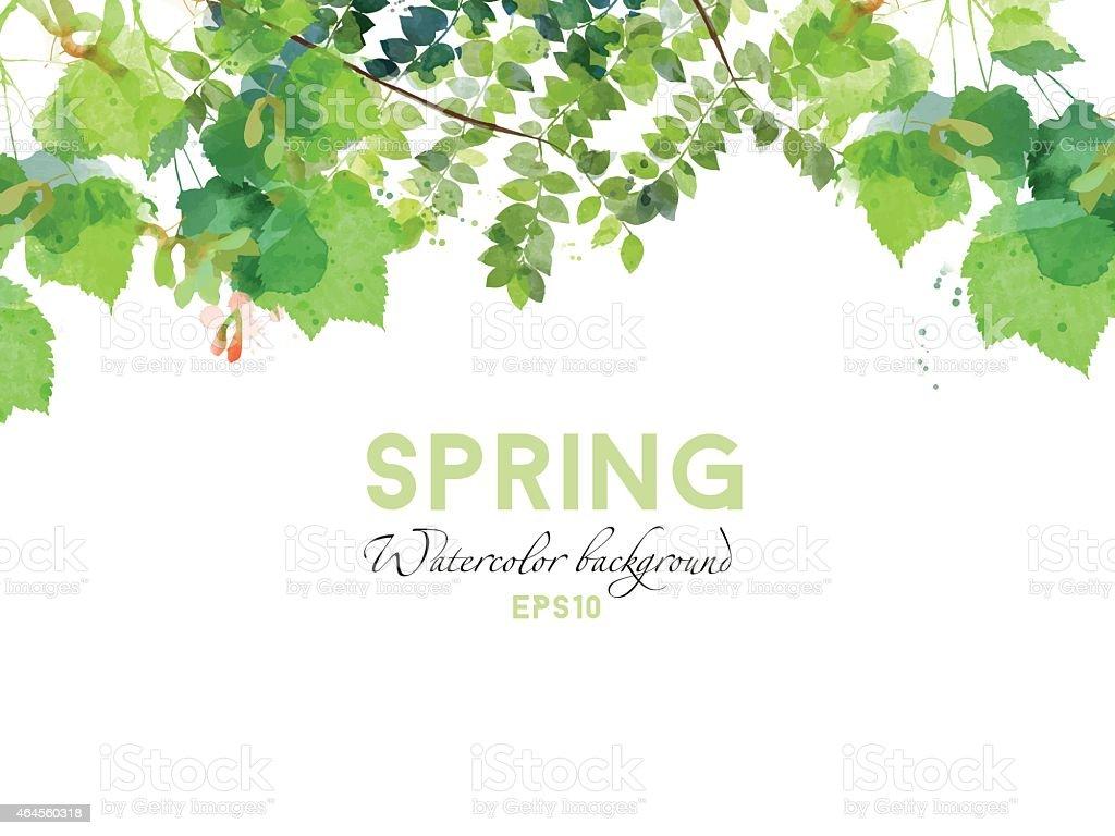 Watercolor vector spring background vector art illustration