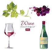 Watercolor vector wine and grapes set