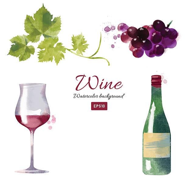 bildbanksillustrationer, clip art samt tecknat material och ikoner med watercolor vector wine and grapes set - vindruva