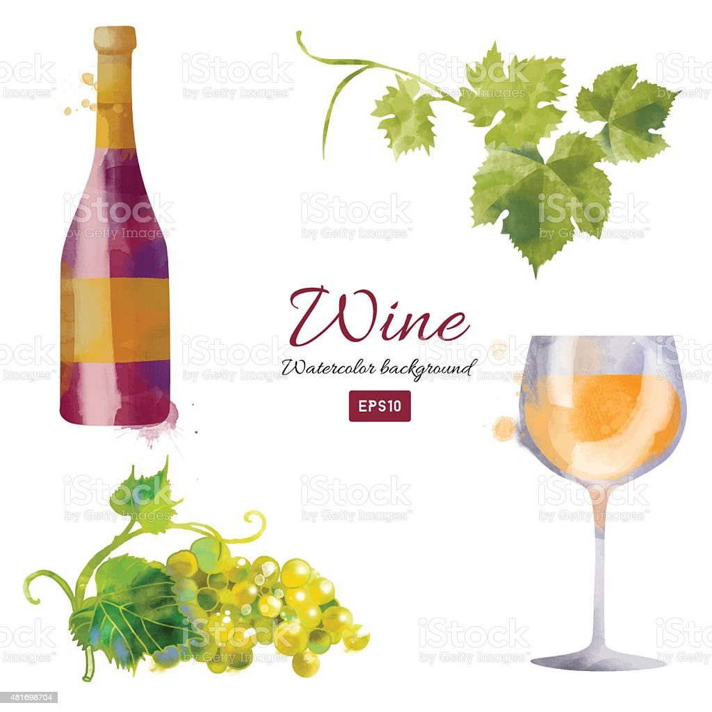 Watercolor vector wine background set vector art illustration