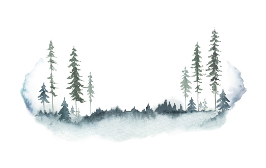 Watercolor vector winter forest landscape with fir trees. Hand painted illustration for greeting floral postcard and invitations isolated on white background.