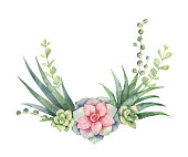 Watercolor vector wreath of cacti and succulent plants isolated on white background. Flower illustration for your projects, greeting cards and invitations.