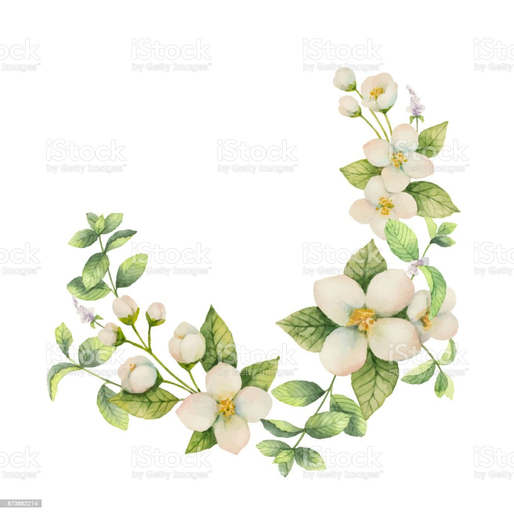Watercolor vector wreath of flowers and branches jasmine isolated on watercolor vector wreath of flowers and branches jasmine isolated on a white background royalty izmirmasajfo Gallery