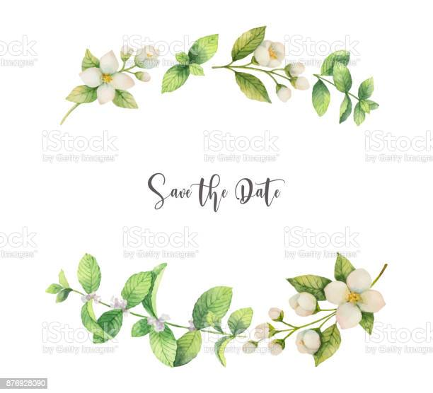 Watercolor vector wreath of flowers jasmine and mint isolated on a vector id876928090?b=1&k=6&m=876928090&s=612x612&h=wc6yq2trczli85hyomyj0f  59l4twsqv1yxygm6wju=