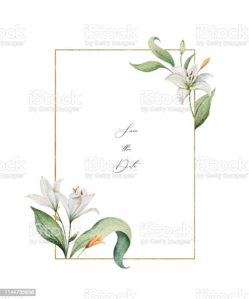 Watercolor vector wreath of lily flowers and green leaves vector id1144735656?b=1&k=6&m=1144735656&s=612x612&h=qfqtx8makqkezddjkih9zrskx8hru5aikxgs gsyhme=