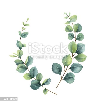 istock Watercolor vector  wreath with green eucalyptus leaves and branches. 1224148675
