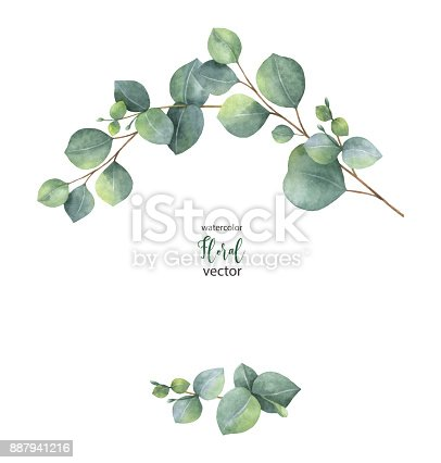 Watercolor Vector Wreath With Green Eucalyptus Leaves And