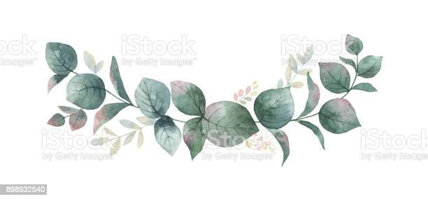 Watercolor vector wreath with green eucalyptus leaves and branches vector id898932540?b=1&k=6&m=898932540&s=612x612&h=n3clult4fyhfs4zvckhefchf45sgogf3jgdqu nnlrk=