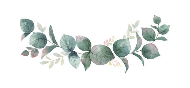 aquarell vektor kranz mit grünen eukalyptus-blätter und zweige. - hochzeitsblumen stock-grafiken, -clipart, -cartoons und -symbole