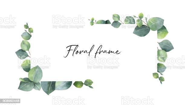 Watercolor vector wreath with green eucalyptus leaves and branches vector id908960448?b=1&k=6&m=908960448&s=612x612&h=obg7q5omul81uelcu2rjlsvtpdogvqsdrbclvqcoers=
