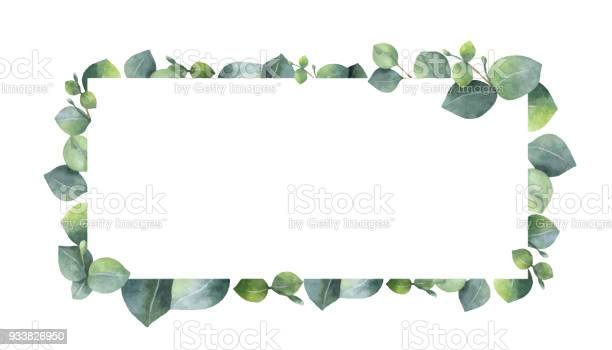 Watercolor vector wreath with green eucalyptus leaves and branches vector id933826950?b=1&k=6&m=933826950&s=612x612&h=s9ouentsmykf3w5iaahaqcbdah5lg3ovlhmqr4 ui2s=