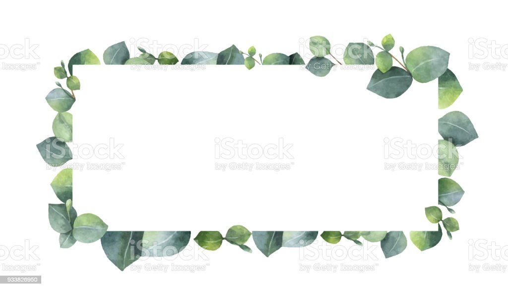 Watercolor vector wreath with green eucalyptus leaves and branches. vector art illustration