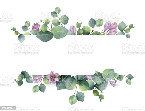 Watercolor vector wreath with green eucalyptus leaves purple flowers vector id916880674?b=1&k=6&m=916880674&s=612x612&h=djwiu4gukruw0za0mc3ytv4ld8saqr kybwzvwtvire=